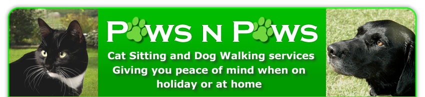 Heading picture with the words 